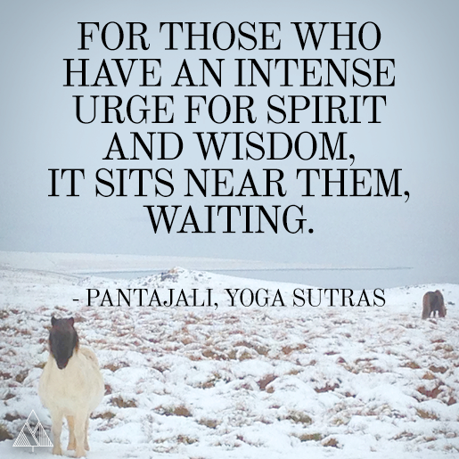 40 Yoga Quotes To Inspire Your Practice: 105 Inspirational Yoga Quotes