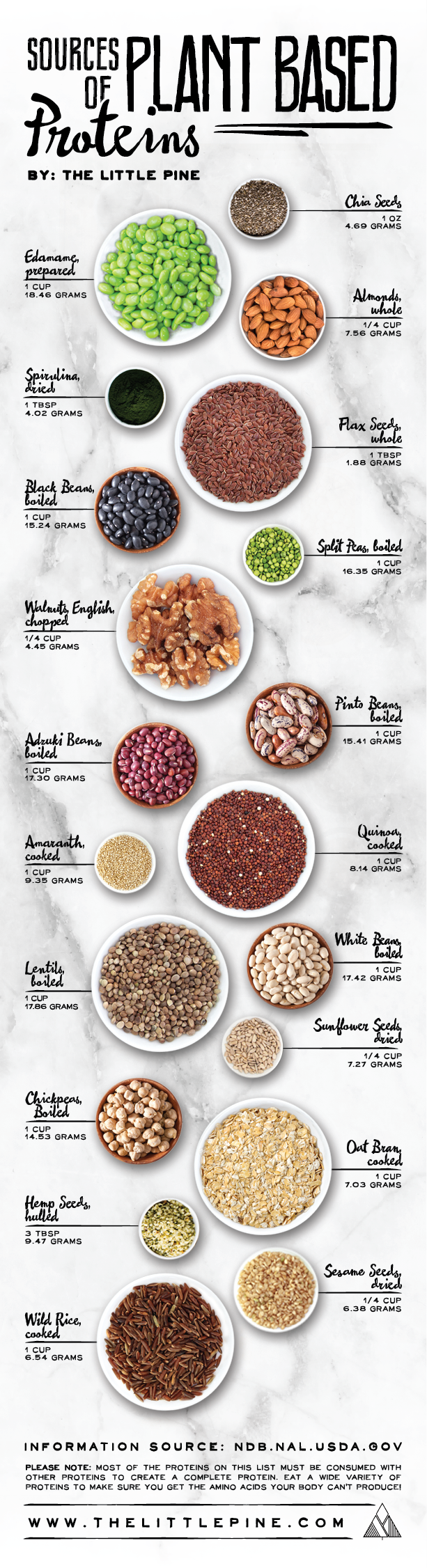 High Protein Vegetarian Foods Chart