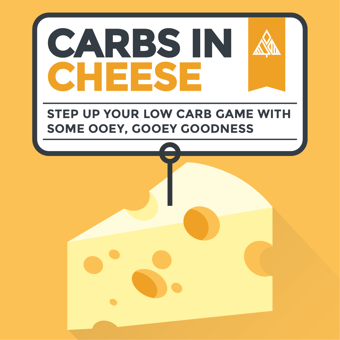 The lack of carbs in cheese are a delicious way to add some ooey, gooey goodness to your next low carb meal! Check out our list of the lowest carb/highest protein cheeses! #lowcarb #keto #glutenfree #grainfree #healthy #recipe #list #paleo #protein #fat #vitamins #minerals #cheesebenefits #americancheese #briecheese #asiagocheese #cheddarcheese #colbycheese #fetacheese #mozzarellacheese