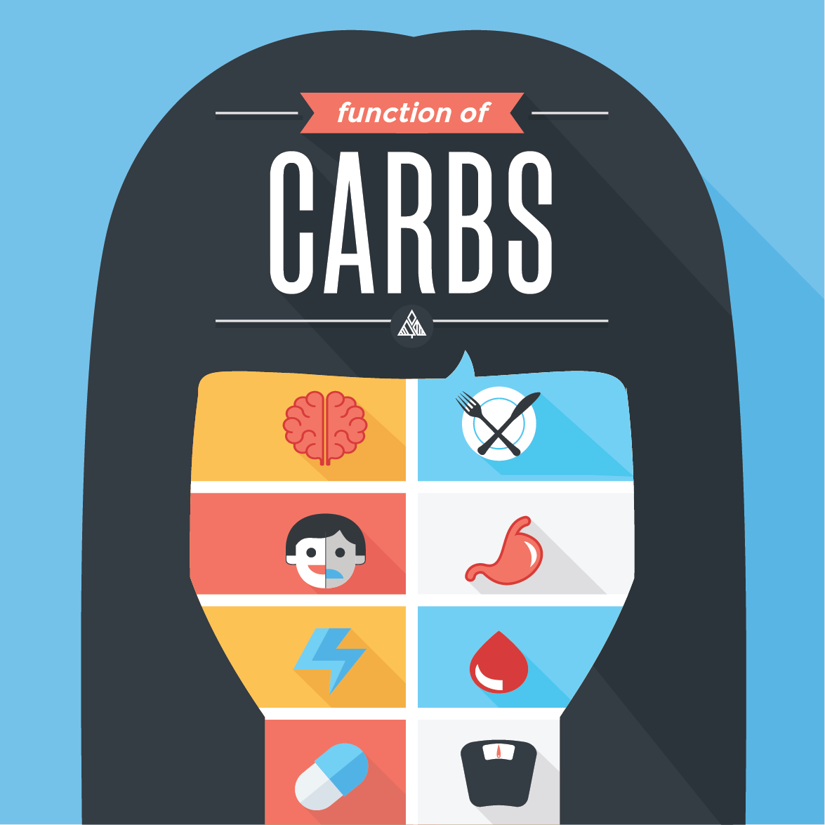 8 Function of Carbohydrates in Our Bodies