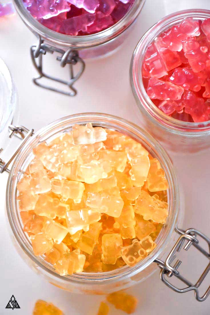 Sugar Free Gummy Bears—A Tummy Friendly, Low Carb Recipe