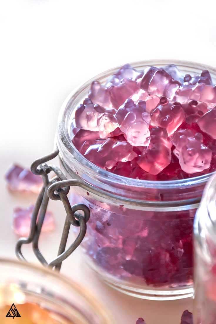 Sugar Free Gummy Bears - The Little Pine