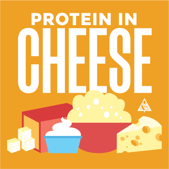 Protein In Cheese