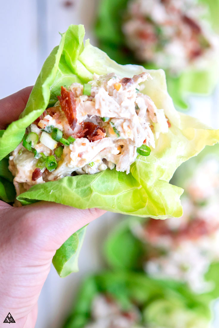 This rotisserie chicken salad is full of creamy, crunchy, cheddar-y, bacon-y goodness, mixed into a portable, protein packed low carb lunch! What more could you ask for? #lowcarb #keto #glutenfree #grainfree #healthy #recipe #withgrapes #sandwich #lettuce #avocado #greekyogurt #witheggs #nomayo #withcranberries #weightwatchers #weightloss #cleaneating #lchf #atkins #dinners