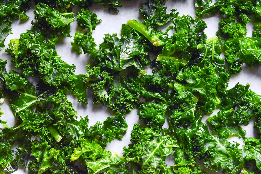 Kale chips on a white background