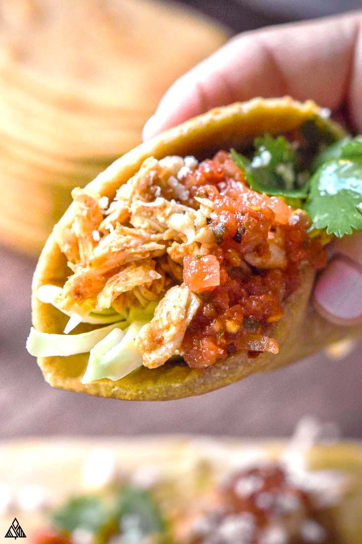 pliable low carb tortillas that are folded